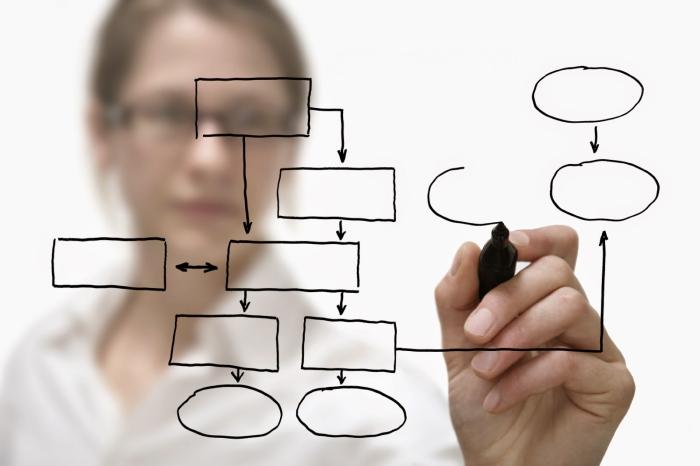 Quem deve liderar a Intranet na minha empresa?